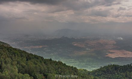 Yercaud – Best time to visit, places to see and things to do